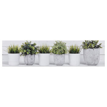 Potted Plants Printed Canvas