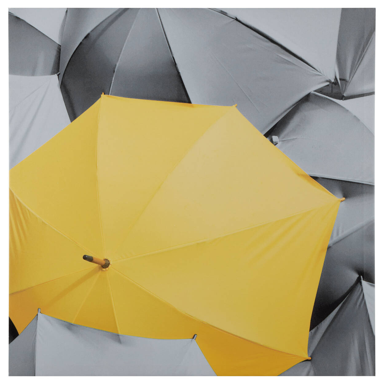 Yellow Umbrella Printed Canvas