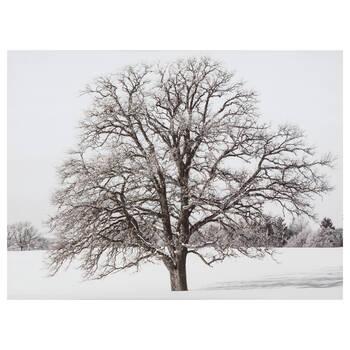 Tableau imprimé d'un arbre en hiver