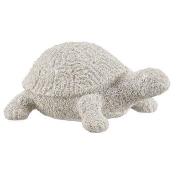 Decorative White Turtle