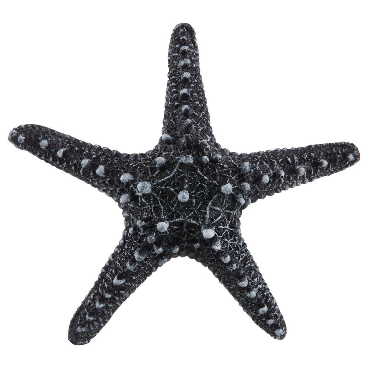 Black Resin Decorative Starfish