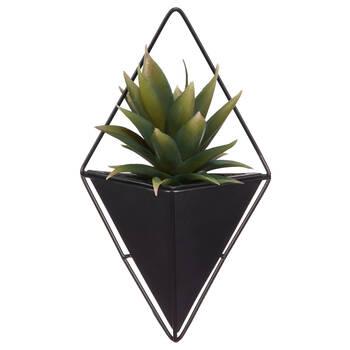 Plante tropicale en pot mural noir