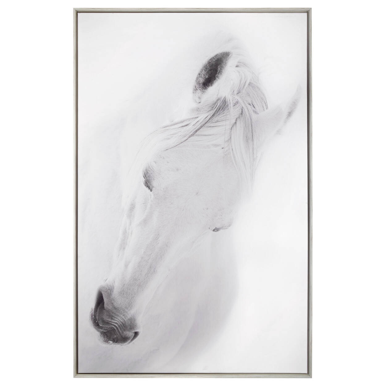 Oversized Printed Horse Framed Art | Bouclair.com