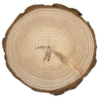 Ensemble de 4 sous-verres en disques de bois