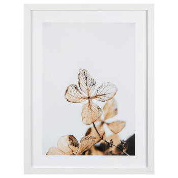 Delicate Leaves Printed Framed Art Under Glass