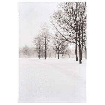 Winter Path Printed Canvas