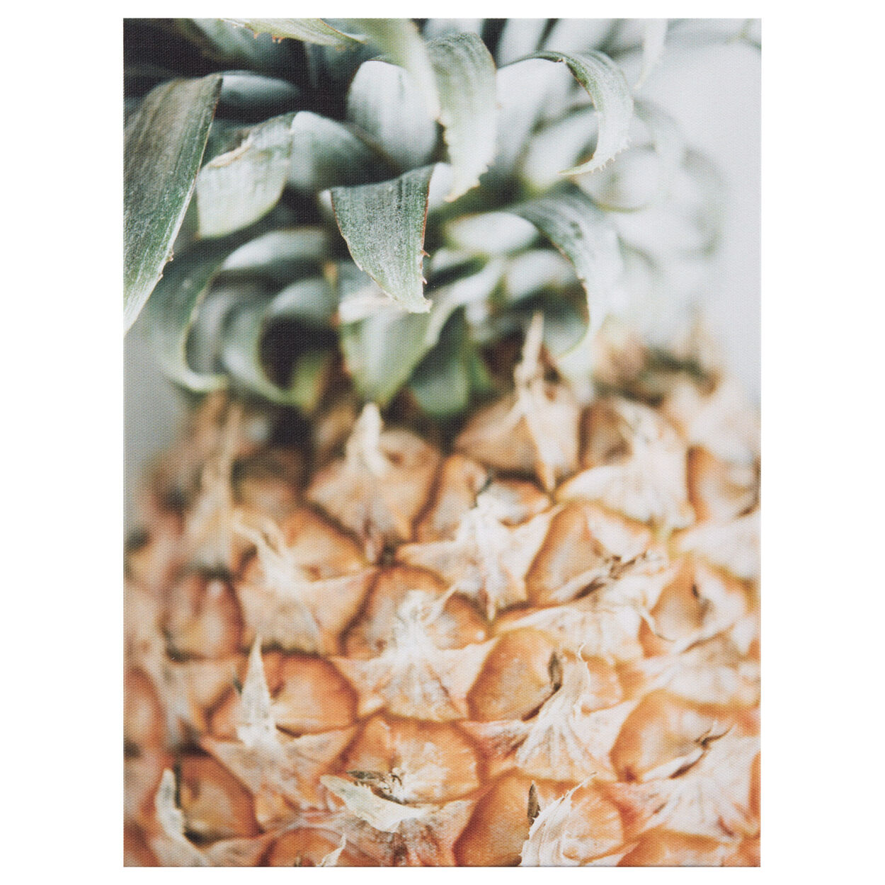 Pineapple Printed Canvas