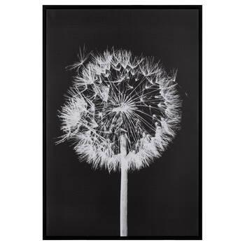 Black & White Dandelion Framed Canvas