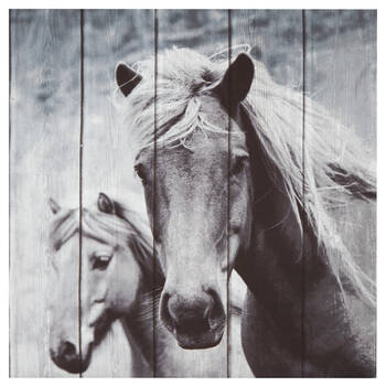 Horse Printed Canvas