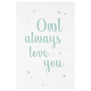 Owl Always Love You Printed Canvas