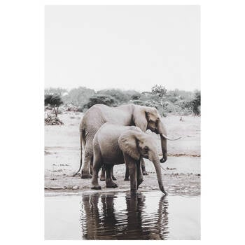 Mom and Baby Elephant Printed Canvas