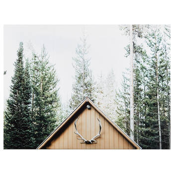 House in Forest Printed Canvas