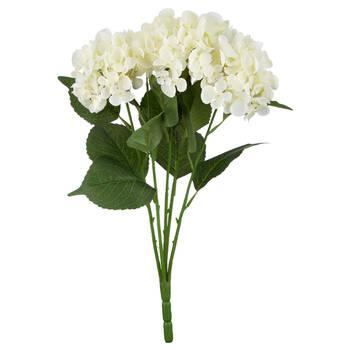 Bouquet d'hortensia