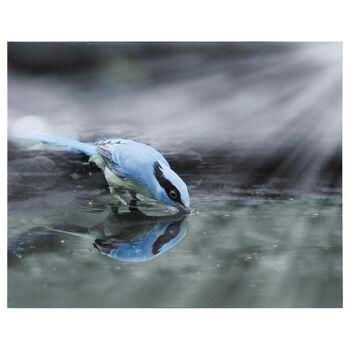 Blue Bird Drinking Printed Canvas
