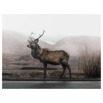 Elk Printed Canvas