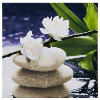 Tableau imprimé roches et fleurs