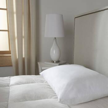 "Jumbo Pillow 26"" x 20"""