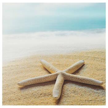 Starfish Canvas