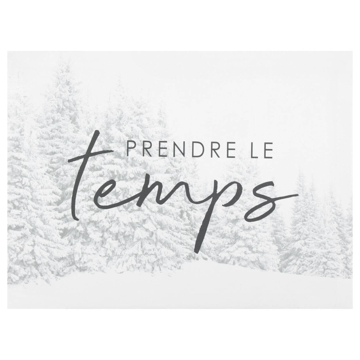 Le Temps Printed Canvas