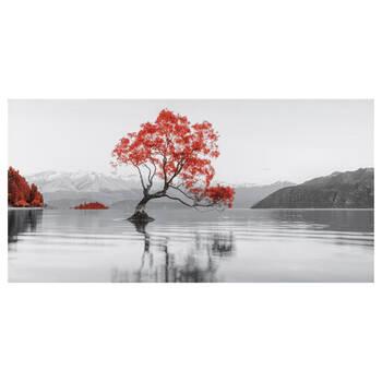 Wanaka Lake Printed Canvas