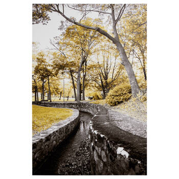 Stone Moat Path Printed Canvas