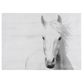 Horse On Planks Printed Canvas