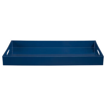 Plastic Tray with Handles