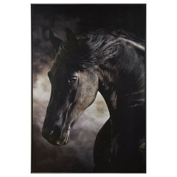 Dark Horse Framed Printed Canvas