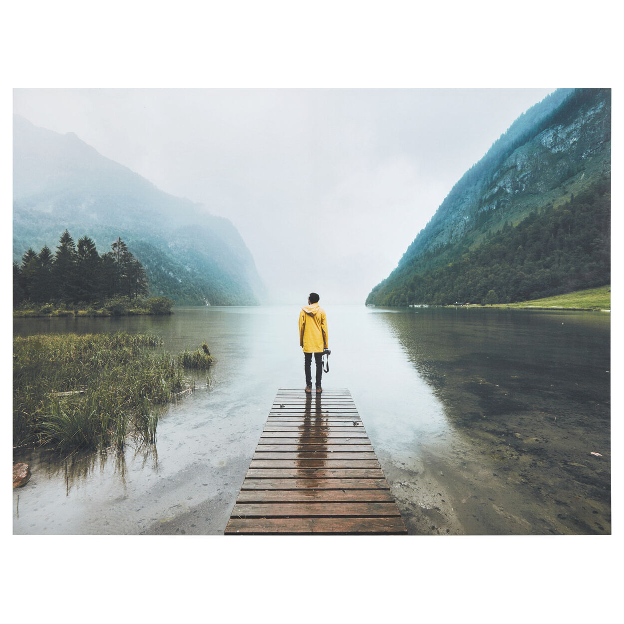Yellow Raincoat Printed Canvas
