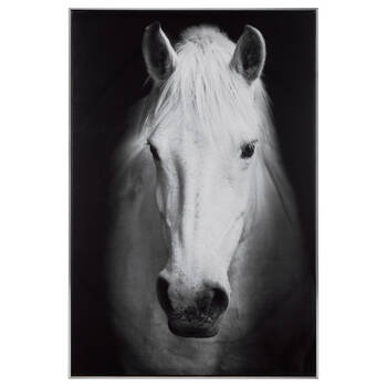 Majestic Horse Framed Art