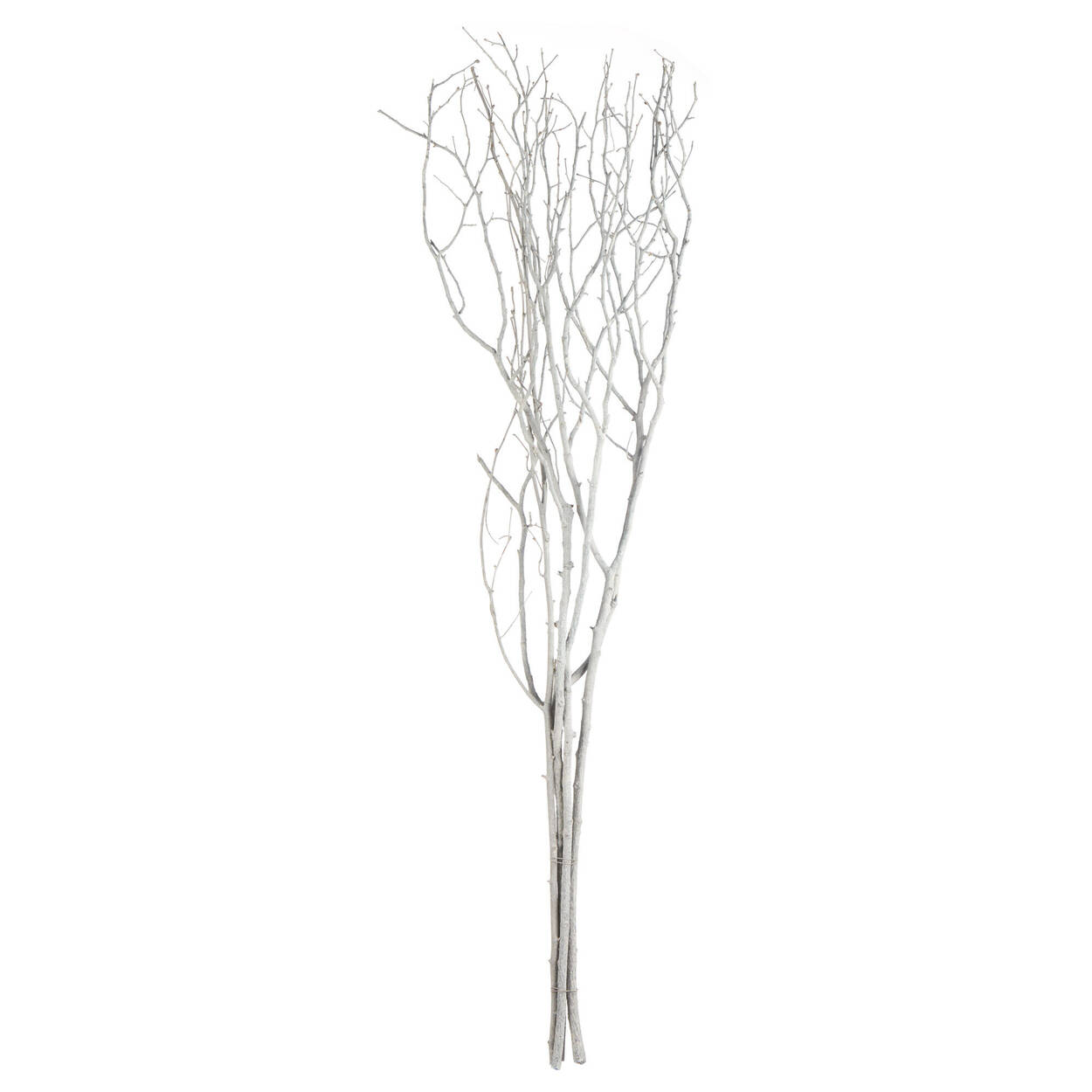 Bundle of White Branches