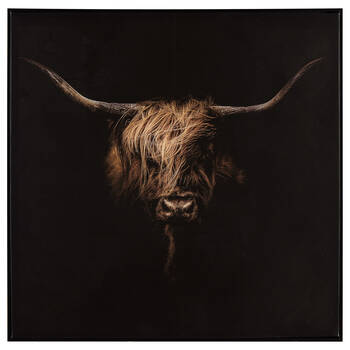 Scottish Cattle Printed Framed Art