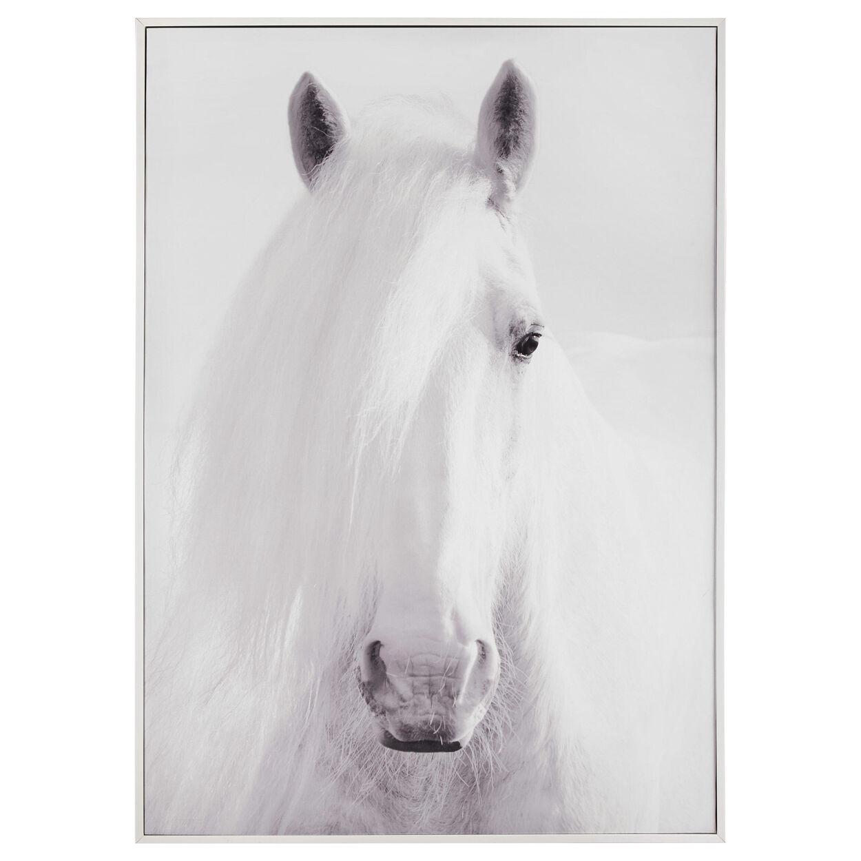 Horse Face Printed Framed Art
