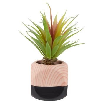 Bamboo-Potted Greenery