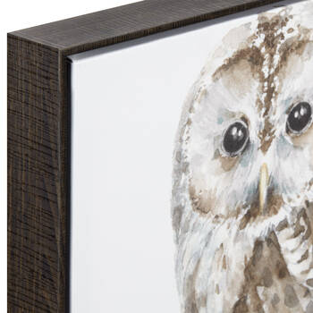 Owl Framed Art