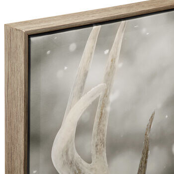 White-Tailed Deer Framed Art