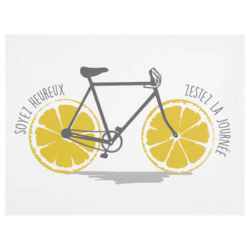 Squeeze The Day Bicycle Canvas | Bouclair.com