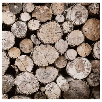 Stacked Wood Logs Printed Canvas