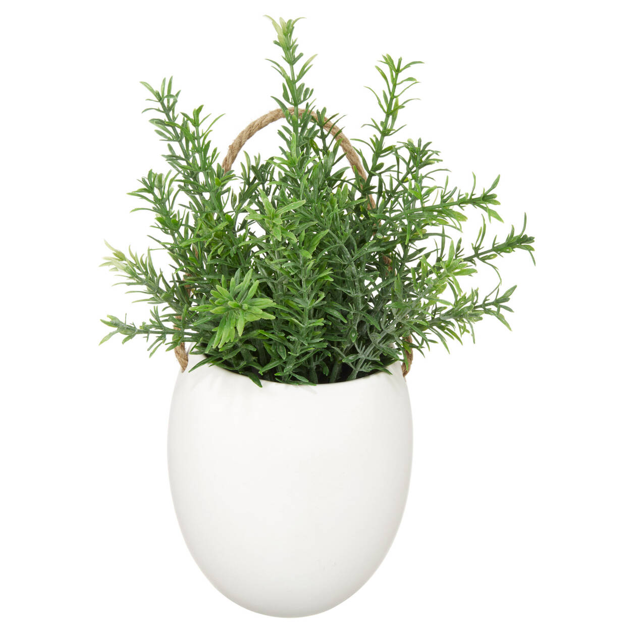 Wall Greenery with Ceramic Pot