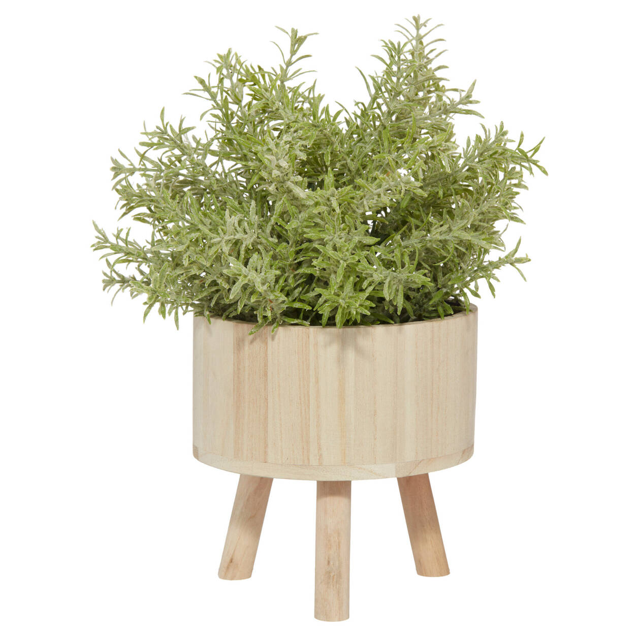 Grass Plant in Wooden Pot on Legs