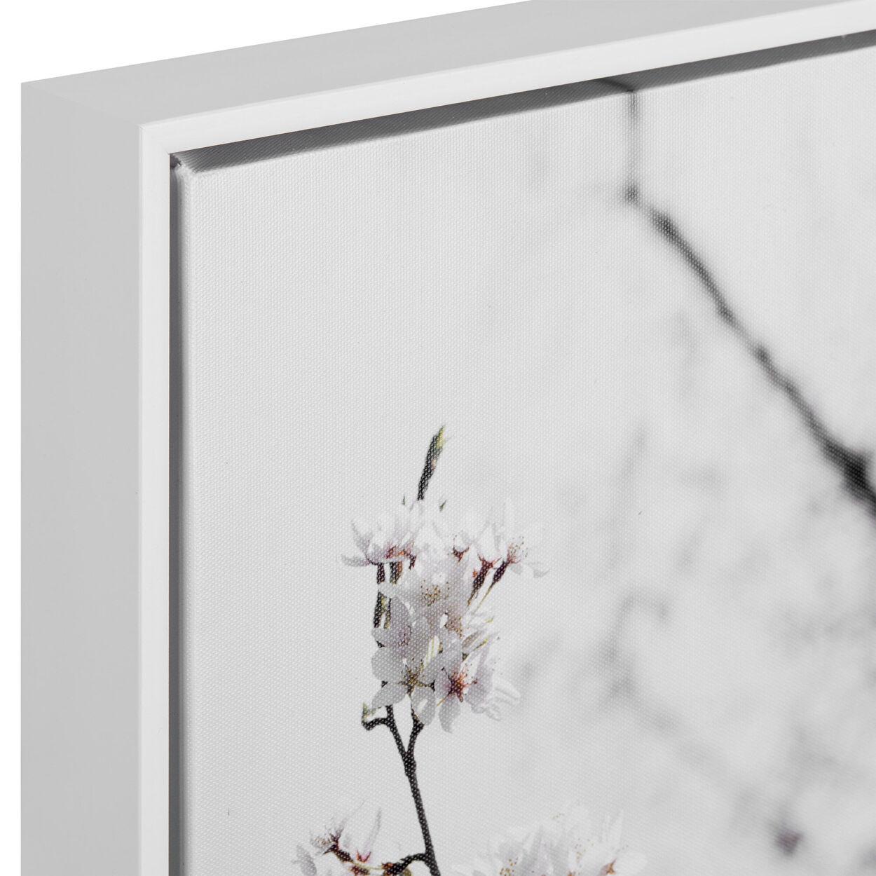 Cherry Blossoms Printed Framed Art