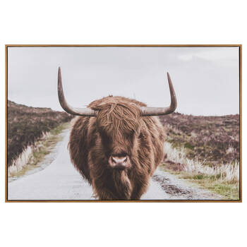 Brown Highland Cow Framed Art