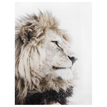 Lion Profile Printed Canvas