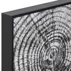 Black & White Tree Trunk Framed Canvas