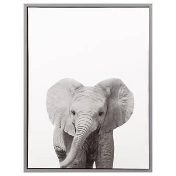Baby Elephant Framed Art
