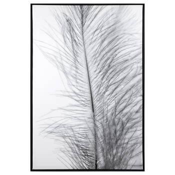 Cadre imprimé d'une plume