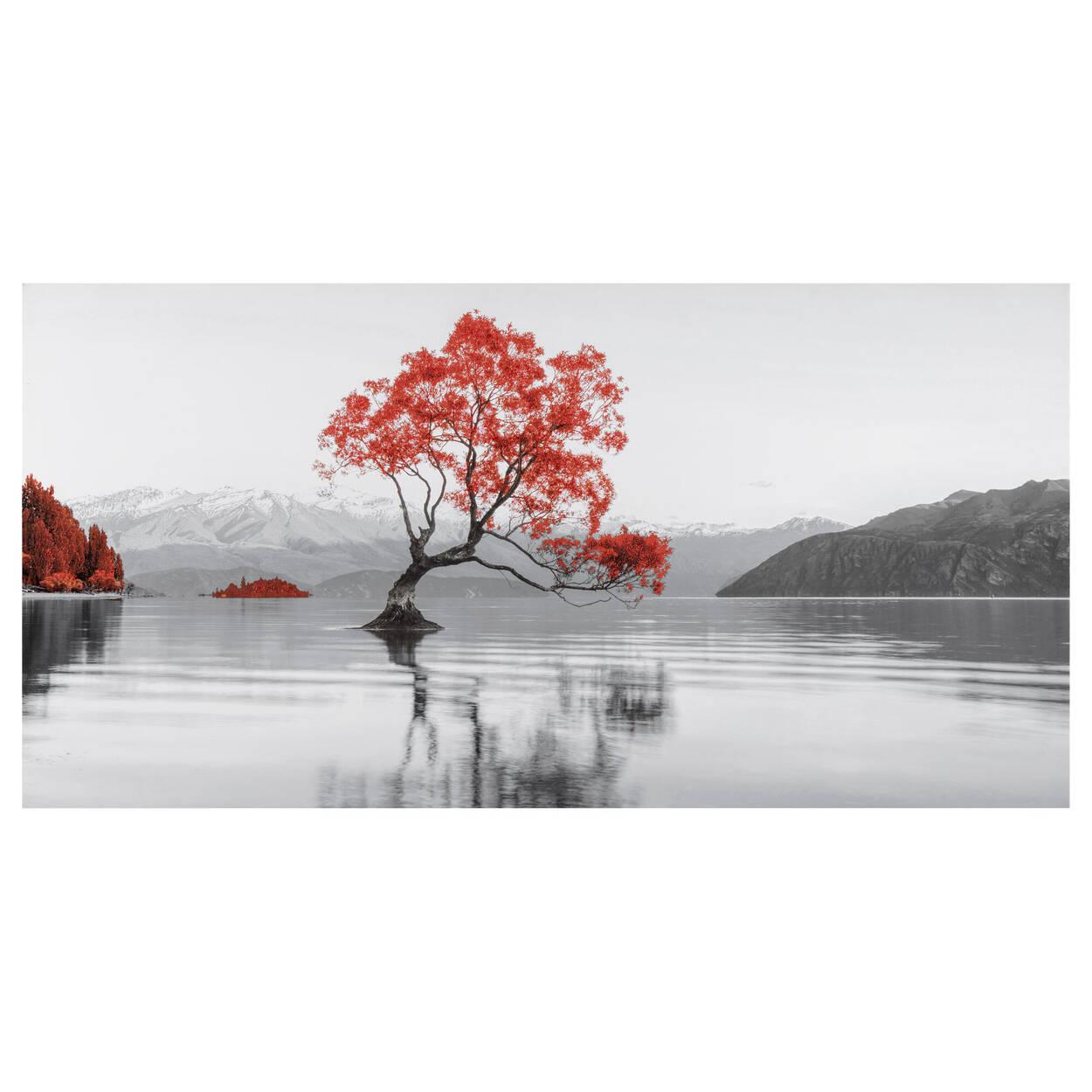 Tableau imprimé lac Wanaka