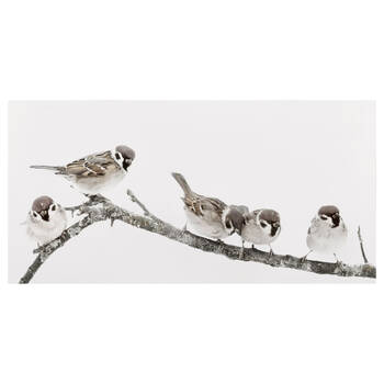 Little Birds Perched on Branch Printed Canvas