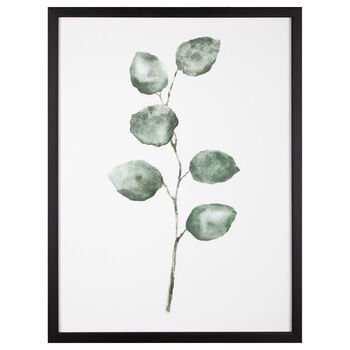 Cynthia Dulude - Cadre imprimé eucalyptus