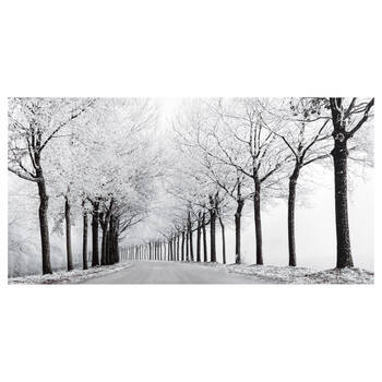 Winter Landscape Printed Canvas
